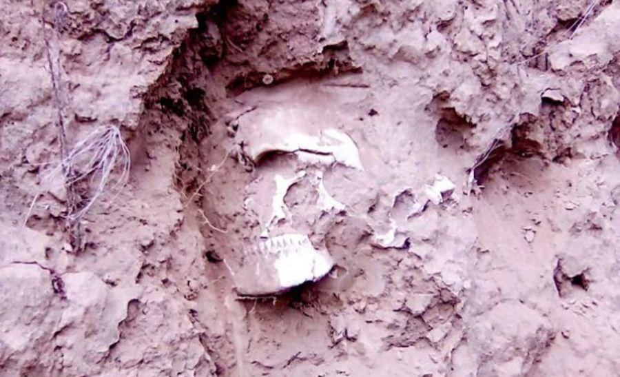 Cráneo de 2100 años